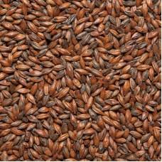 Солод Шоколадный 900 Курск, 1 кг